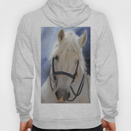 Painted White Horse head Hoody