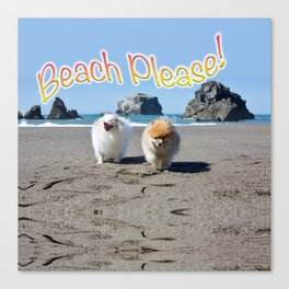 Beach Please! Canvas Print