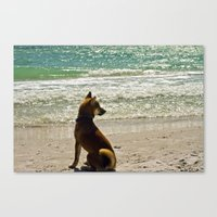 shiba Canvas Prints featuring Shiba Inu by Blue Lightning Creative
