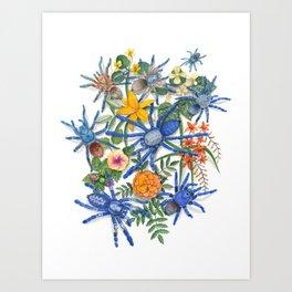 Tarantulas Art Print