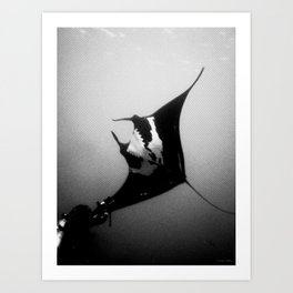 Evading Devil Fish Art Print