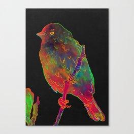 Ptica Canvas Print