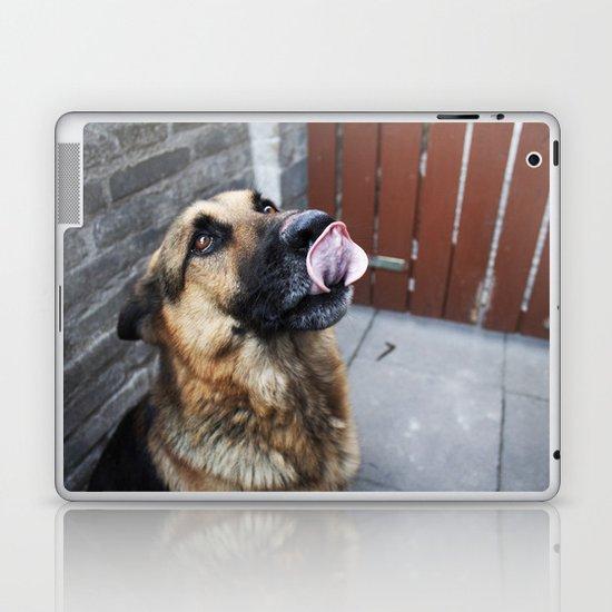 Dog photography Laptop & iPad Skin