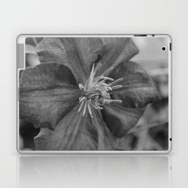 clamatis Laptop & iPad Skin