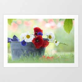 Poppies Symphonies Art Print
