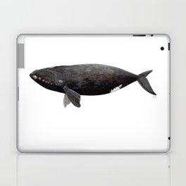 Northern right whale (Eubalaena glacialis) Laptop & iPad Skin