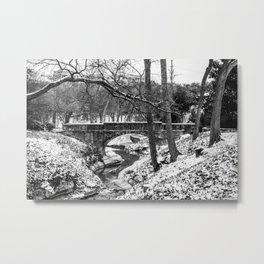 Dallas Winter Landscape Metal Print