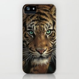 Eye of the Tiger iPhone Case