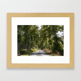 Down the road Framed Art Print