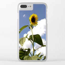 Summer Sundays Clear iPhone Case