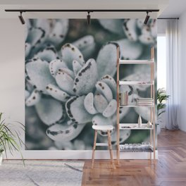 Blue soft and delicate cactus Wall Mural