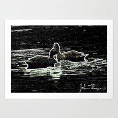 Double Ducks Art Print