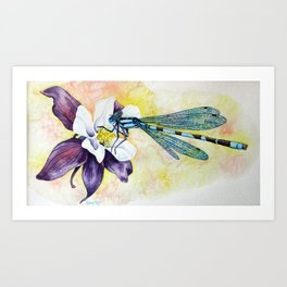Damselfly on Columbine Art Print