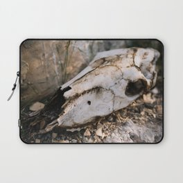 Deer Skull, Big Bend National Park Laptop Sleeve