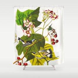 Black and Yellow Warbler Bird Shower Curtain