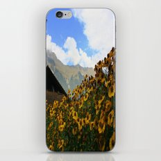 Daisies and Alps iPhone & iPod Skin