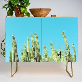 Desert Cactus Reaching for the Blue Sky Credenza