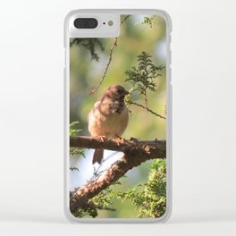 Sparrows Enjoy the Day Clear iPhone Case