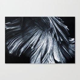 Sakana 02 Canvas Print