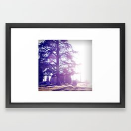Eternal Life Framed Art Print