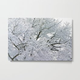Treetop Snow Metal Print