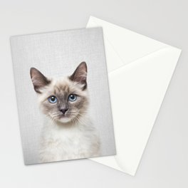 Cat - Colorful Stationery Cards