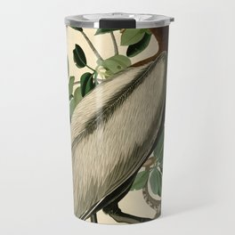 Brown Pelican (Pelecanus occidentalis) Scientific Illustration Travel Mug