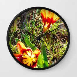 Sunkissed poppies from Roberta Winters Photography Wall Clock