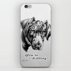 You're Kidding : Black Labrador iPhone Skin