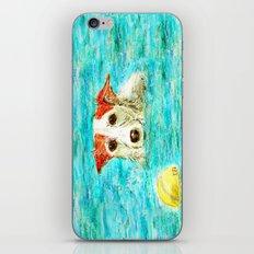 Jack Russell Terrier iPhone Skin