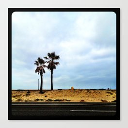 Palm trees at the beach. Canvas Print