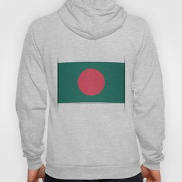 Flag of Bangladesh. The slit in the paper with shadows. Hoody