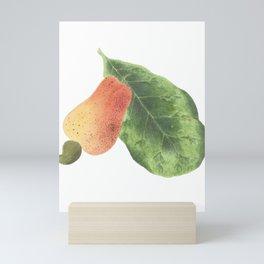 Cashew Apple Watercolour Mini Art Print