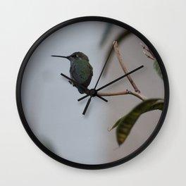 The Littlest Bird Wall Clock