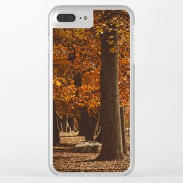 Fall Slumber Clear iPhone Case