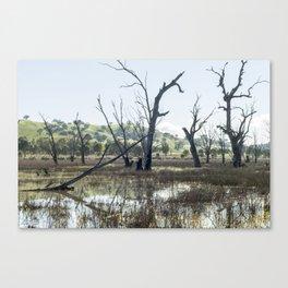 Boggy Bridge Swamp Canvas Print