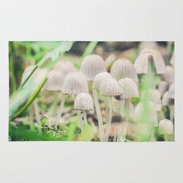 Beautiful toxic mushrooms at the forest, macro shot Rug