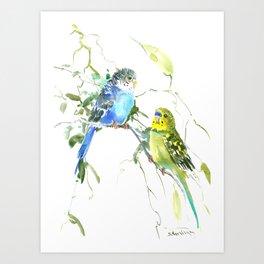 Parakeets, budgies pet bird home decor Art Print