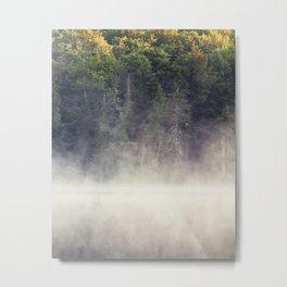 light and fog Metal Print