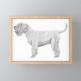 Soft coated wheaten terrier Framed Mini Art Print