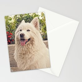 Angel In Disguise Stationery Cards