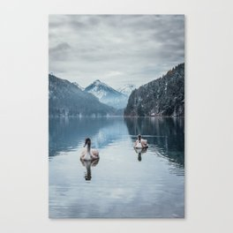 Couple of swans, romantic scene in bavarian alps Canvas Print