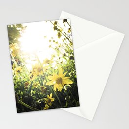 LUV IN THE SUN Stationery Cards