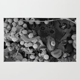 Nocopseudobacillum Rug