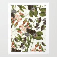 Flowers illustration Art Print