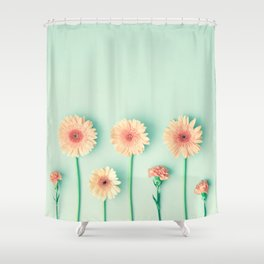 composition of gerbers/daisies over mint Shower Curtain