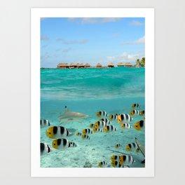 Diving with sharks on Bora Bora Art Print