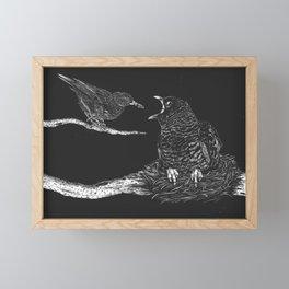 Cuckoo nestling Framed Mini Art Print