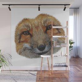 Fox face portrait, animals, nature Wall Mural