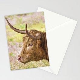Longhorn 2 Stationery Cards